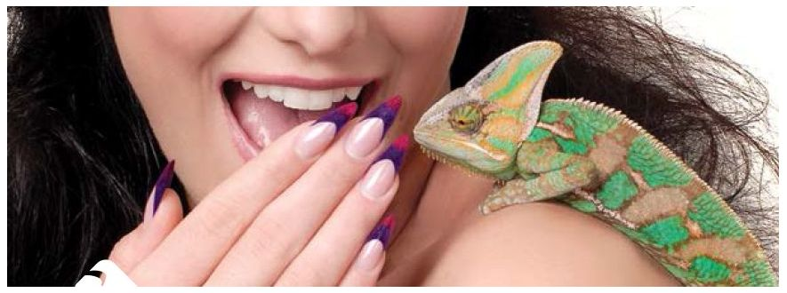 Chameleon Colour Gels