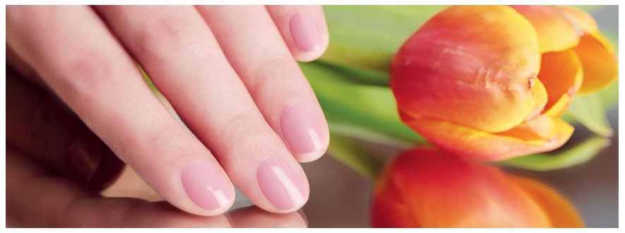 Cuticle Oils